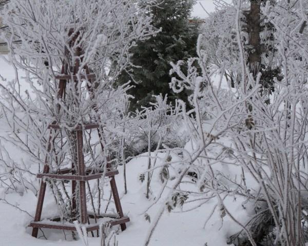 Vinter_IM2