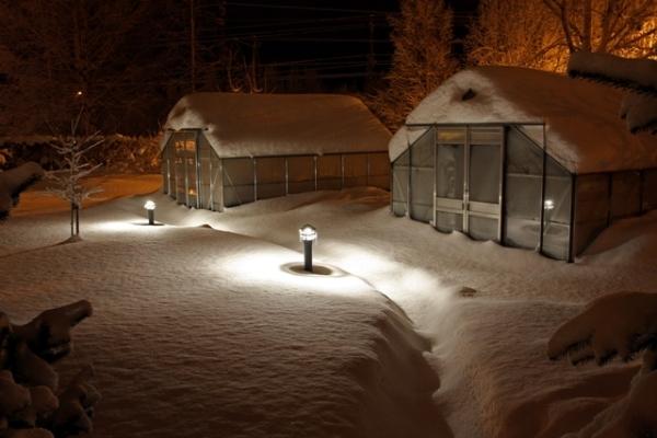 Vinter_Vaxthus_vinter1