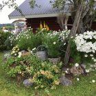 http://www.bodenstradgardssallskap.se/wp-content/uploads/2018/07/7-2-140x140.jpg